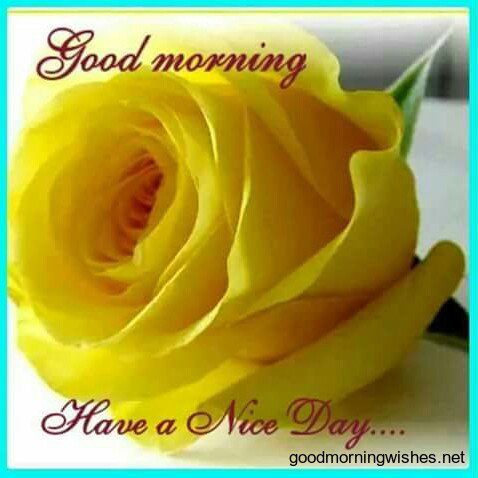 @kantasharma8863 GOOD MORNING SWEETY THANKS FOR UR RTS   #HAVE AGR8 TUESDAY #JUST ENJOYYYYY #STAY BLESSED AND HAPPY https://t.co/ubct022VYx