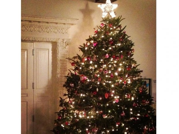 What is Christmas tree syndrome and is it making us all ill?