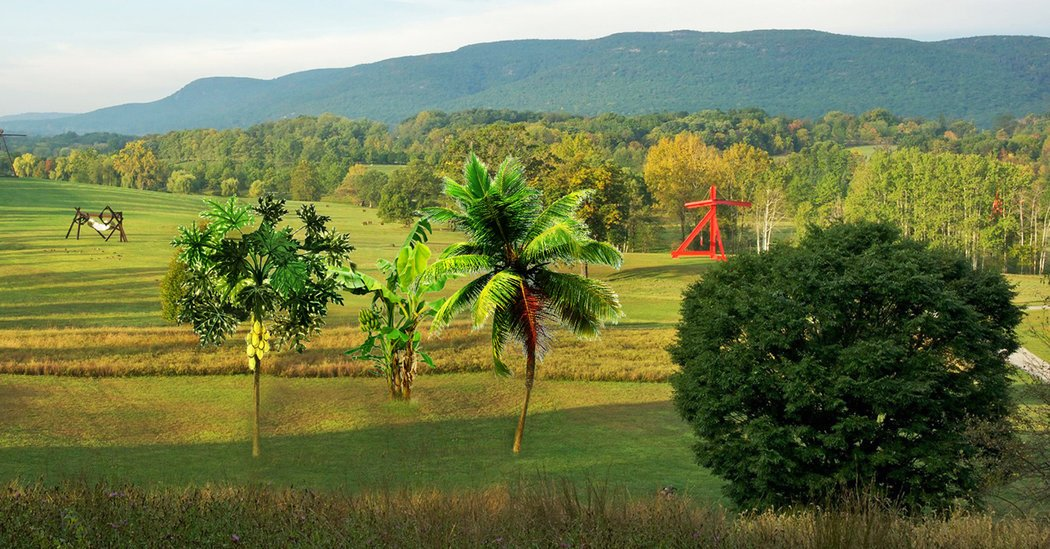 Storm King Show to Focus on Climate Change in 2018