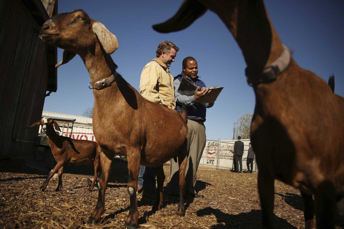 Bonton Farms in Dallas meant to help provide fresh produce