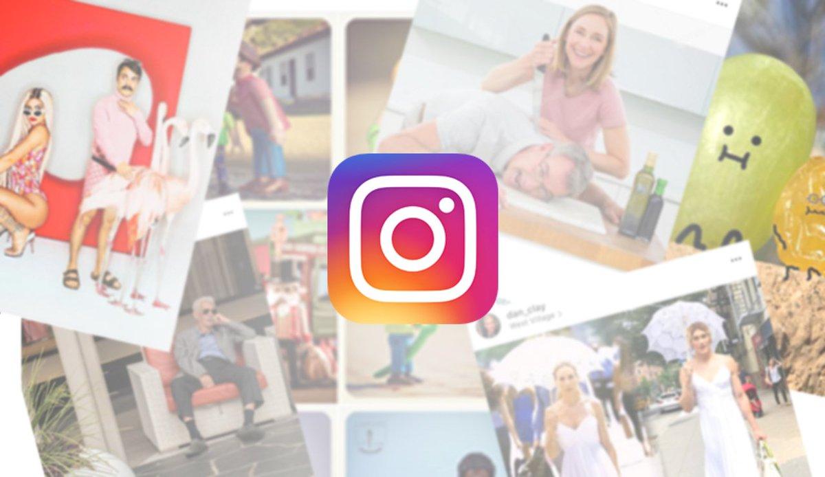 test Twitter Media - Dit zijn de vijf Instagram-accounts die je wat ons betreft echt niet had mogen missen in 2017! Van slapende mannen tot druiven met een gezichtje. -> https://t.co/Nbv2HUxsaS #DWDD https://t.co/dOtGDQ5pvh