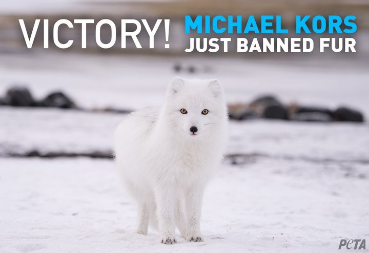 RT @PETAUK: After meeting with @peta US officials today, Michael Kors has announced they are dropping fur! https://t.co/pXPl1LOvTN
