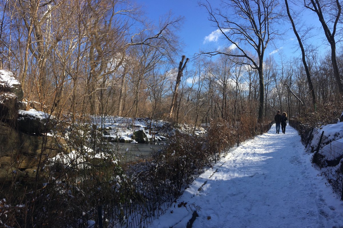 A walk through the North Woods centralparknyc