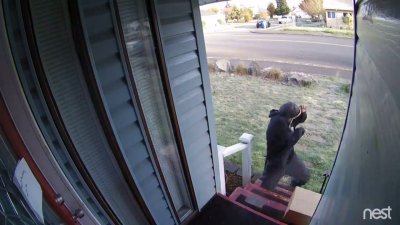 Man fed up with porch thieves sells booby-trapped box that sends crooks running