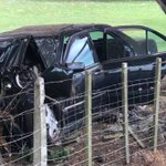 Sleepy driver crashes, car hits tree and another flies off Coromandel road