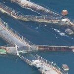 Washington fish farm lease canceled after Atlantic salmon escape