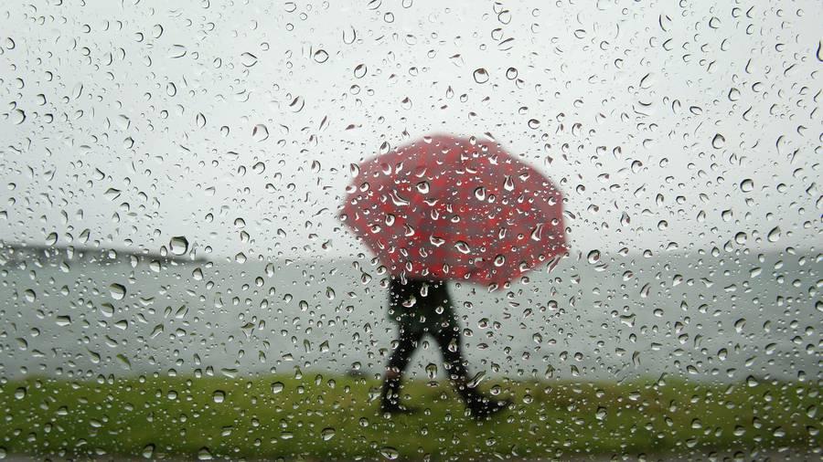 Bay of Plenty on severe thunderstorm watch
