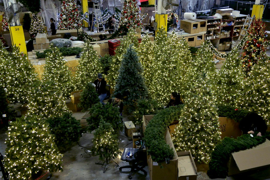 Christmas tree growers battle against popularity of plastic
