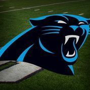 Celebrities, athletes react to Panthers owner selling team - | WBTV Charlotte