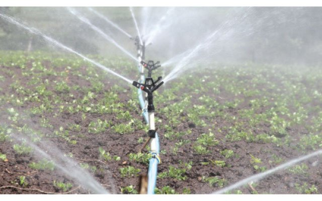 Govt invests $52m in irrigation | The