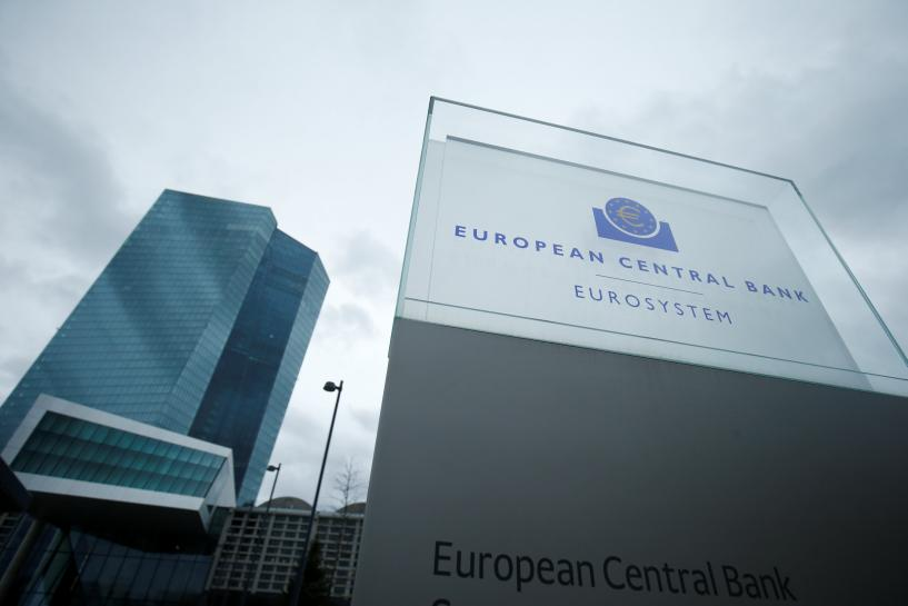 One large euro zone bank is short of capital: ECB