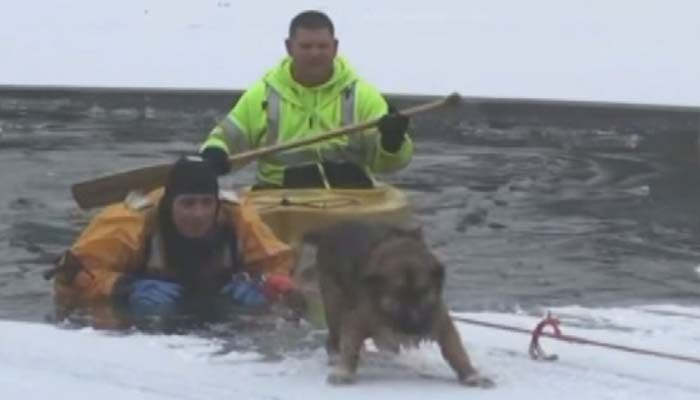 VIDEO: Dog, owner rescued from icy pond - | WBTV Charlotte