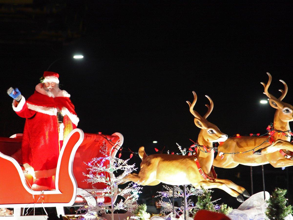 The science is in: Santa's sleigh is pulled by a team of female reindeer