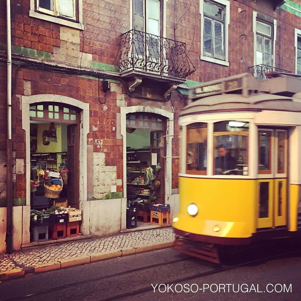 test ツイッターメディア - グラッサ地区、昔ながらの商店の前を通る路面電車28番。 #リスボン #ポルトガル https://t.co/JLnS1kpPyN