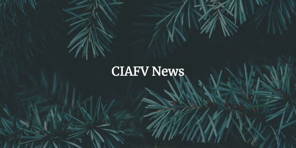 test Twitter Media - CIAFV News: resources for the immigrant serving communityhttps://t.co/AHCFb3b3c3 https://t.co/gDX0yhTyut