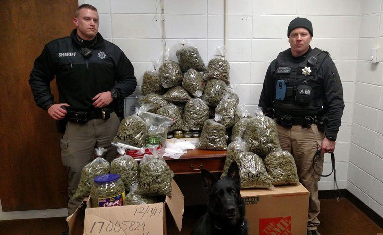 Elderly couple tells cops 60lb (27kg) of pot found in their car was for 'Christmas gifts'