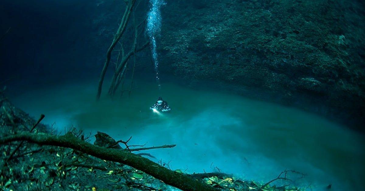 Underwater river in Mexico: https://t.co/gnPCnuMQsu
