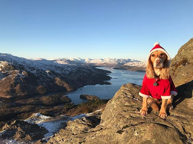 It's beginning to look a lot like #Christmas on Ben A'an!���� @lomondtrossachs�� IG/j1mmylock https://t.co/WsrhJPf71M