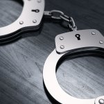 Westland man charged in mom's stabbing death