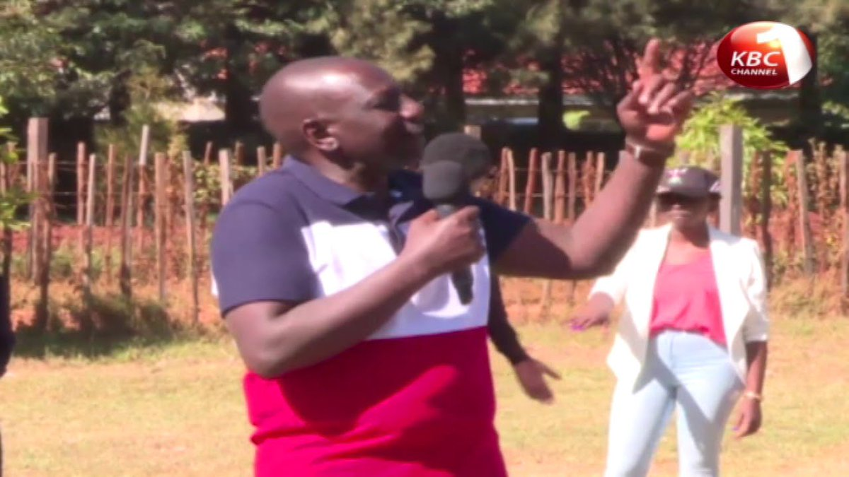 Uasin Gishu women benefit from DP's chicks donation