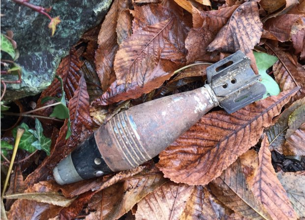 Oregon woman finds WWII-style mortar shell in her shed