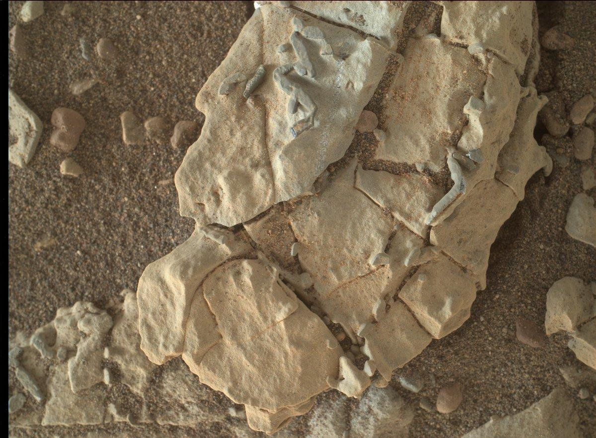 What did NASA's Curiosity rover find on Mars? Twitter had fun guessing