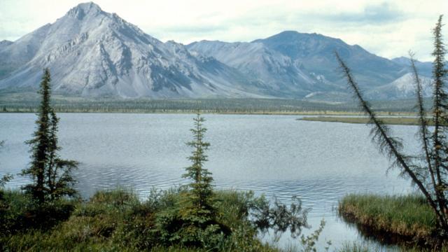 'Alaska's Arctic National Wildlife Refuge is now up for sale' https://t.co/2WlgRSwSGC https://t.co/WZfwwDbnln