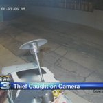 Local business owner believes video shows heater thief