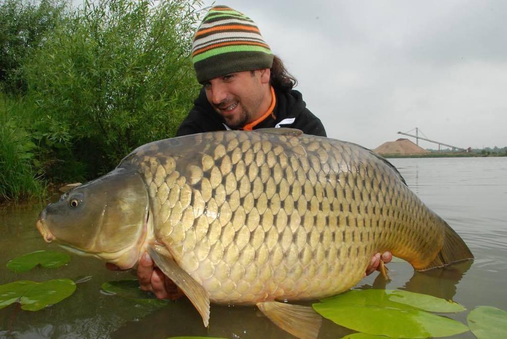 #onthebank #carp #karpfen #<b>Catchandrelease</b> #lkbaits #carpfishing #fishing #angling #karpfenan