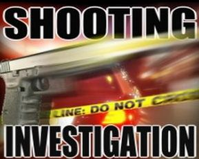Dover shooting is under investigation