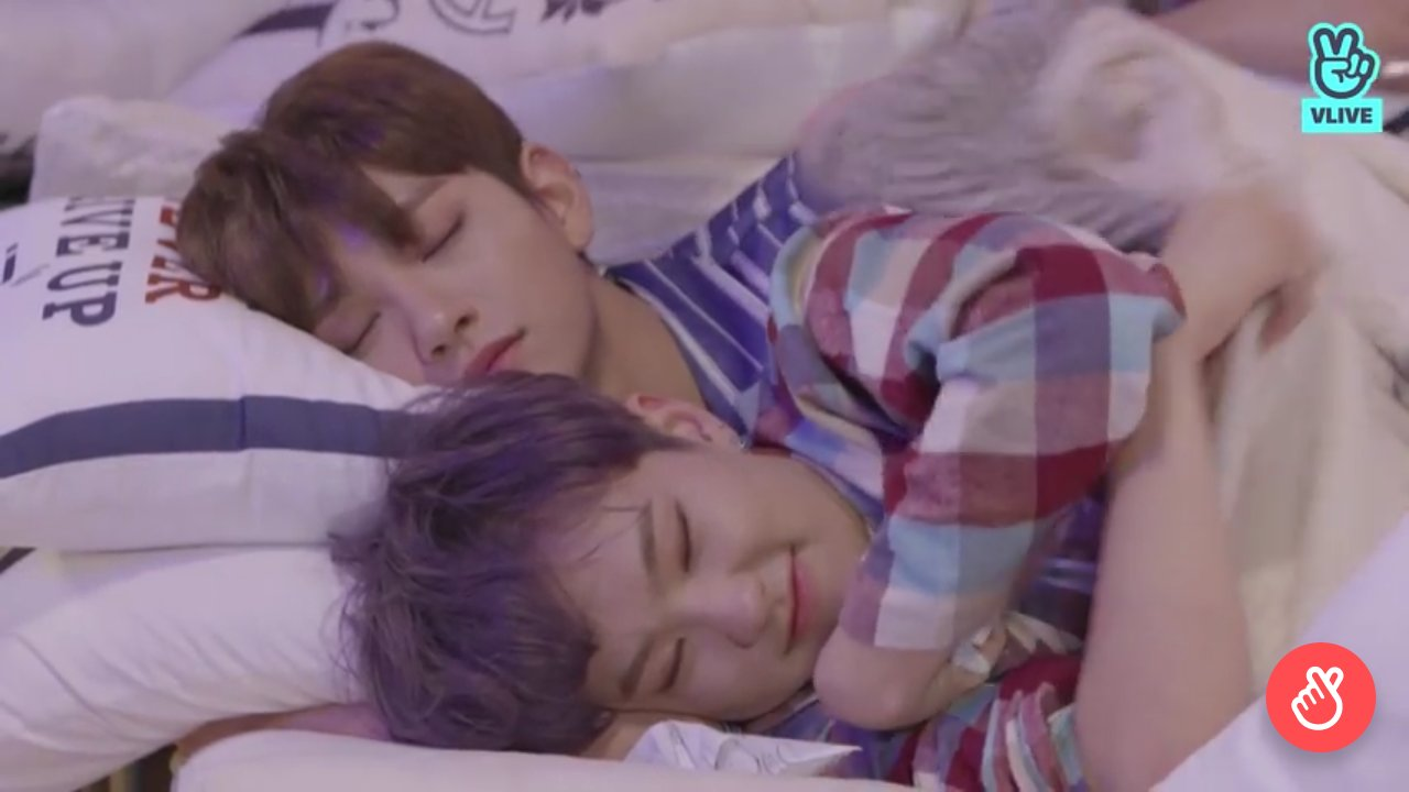 anyway i will never get enough of happy haemjji soonyoung laying down at shua's arm like ever https://t.co/PVltDSISJ5