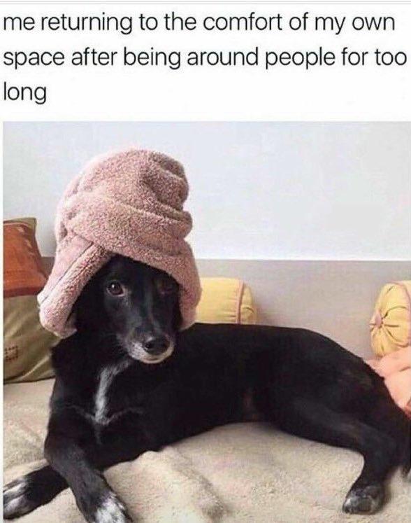 Can relate... https://t.co/AQfGcWlzBJ