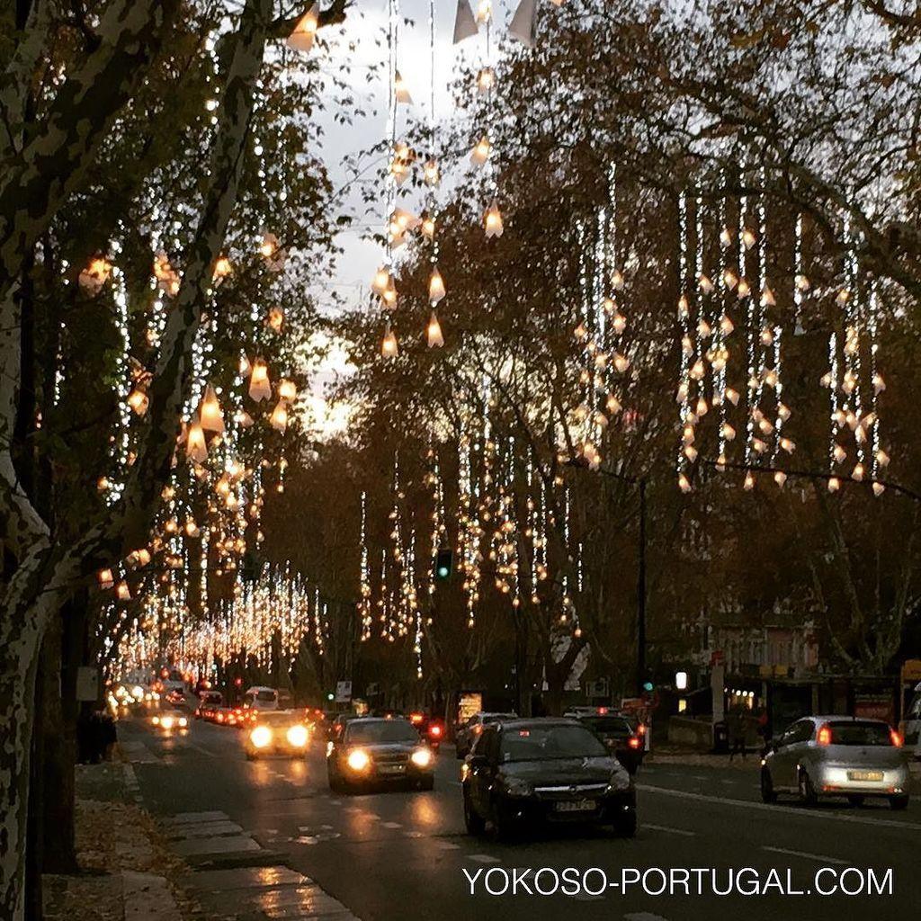 test ツイッターメディア - リスボンのリベルダーデ大通り。プラダやグッチ、ヴィトンなど高級店が軒を並べます。 #リスボン #ポルトガル https://t.co/YJhP6Lvnhu