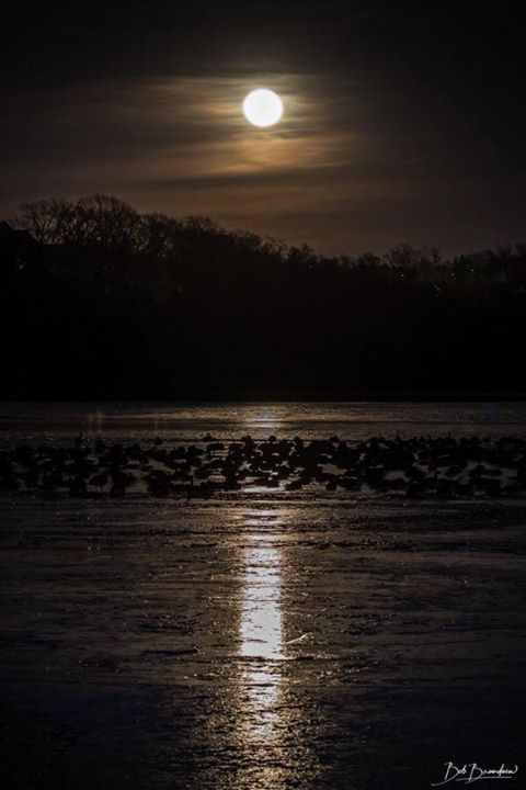 test Twitter Media - Check out this picture of a full moon over Riss Lake @parkvillemo. Thank you Bob B. for sharing! https://t.co/tCIPxHTsFw