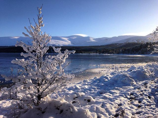 A frozen loch and snowy hills. Now, that's a #winter scene! ❄️❄ @VisitCairngrms �� IG/iang89 https://t.co/zfYuHYQmH6