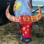 Buffalo painting contest held in southwest China