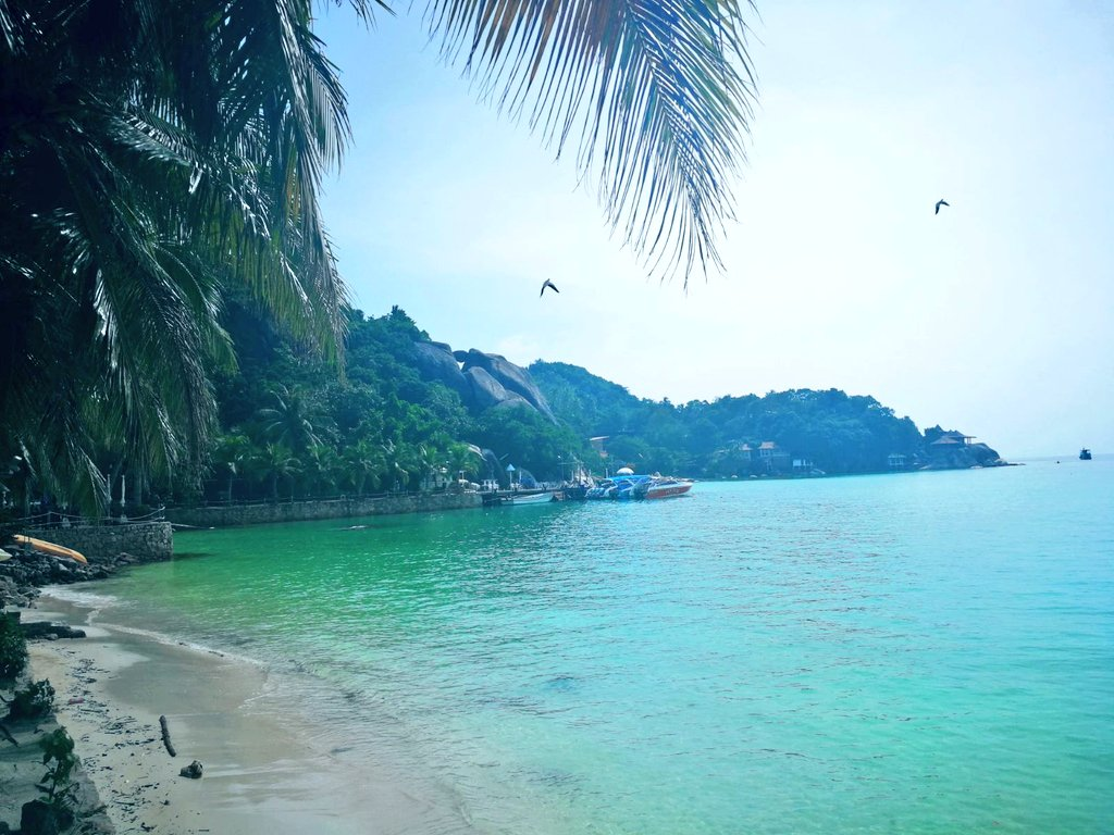 1 pic. This is the fucking paradise!  I 💜 #Kohtao YFX3WPcwYl