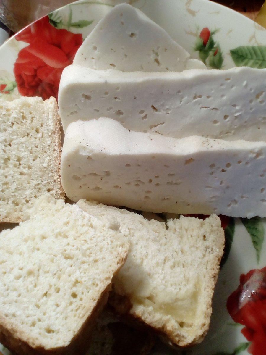 Домашний твердый сыр из козьего молока в домашних условиях 199