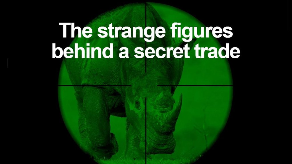 The global gangs with links to the demise of the African rhino   https://t.co/diaou2WYX6 https://t.co/ywTtu9Qw0n