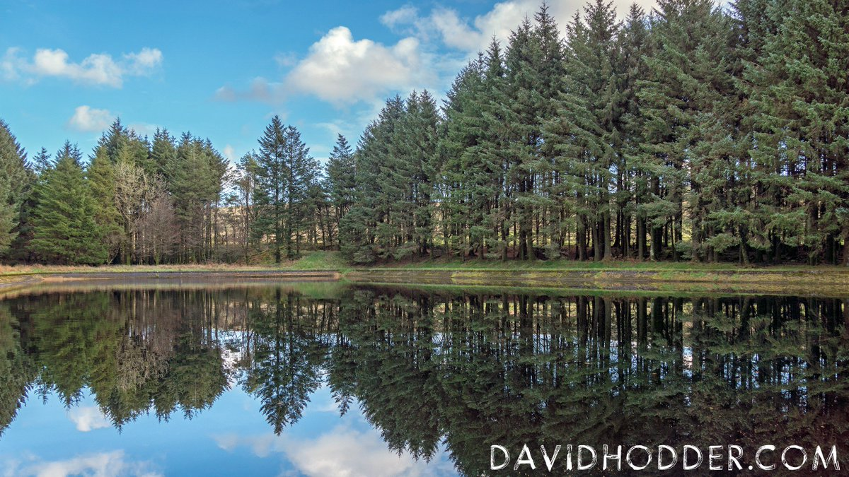 test Twitter Media - #January reflections in Butterbrook Reservoir on #Dartmoor  #FridayFeeling #FridayMotivation  @DevonLife @WMNPictures https://t.co/jBN1kfYJCJ
