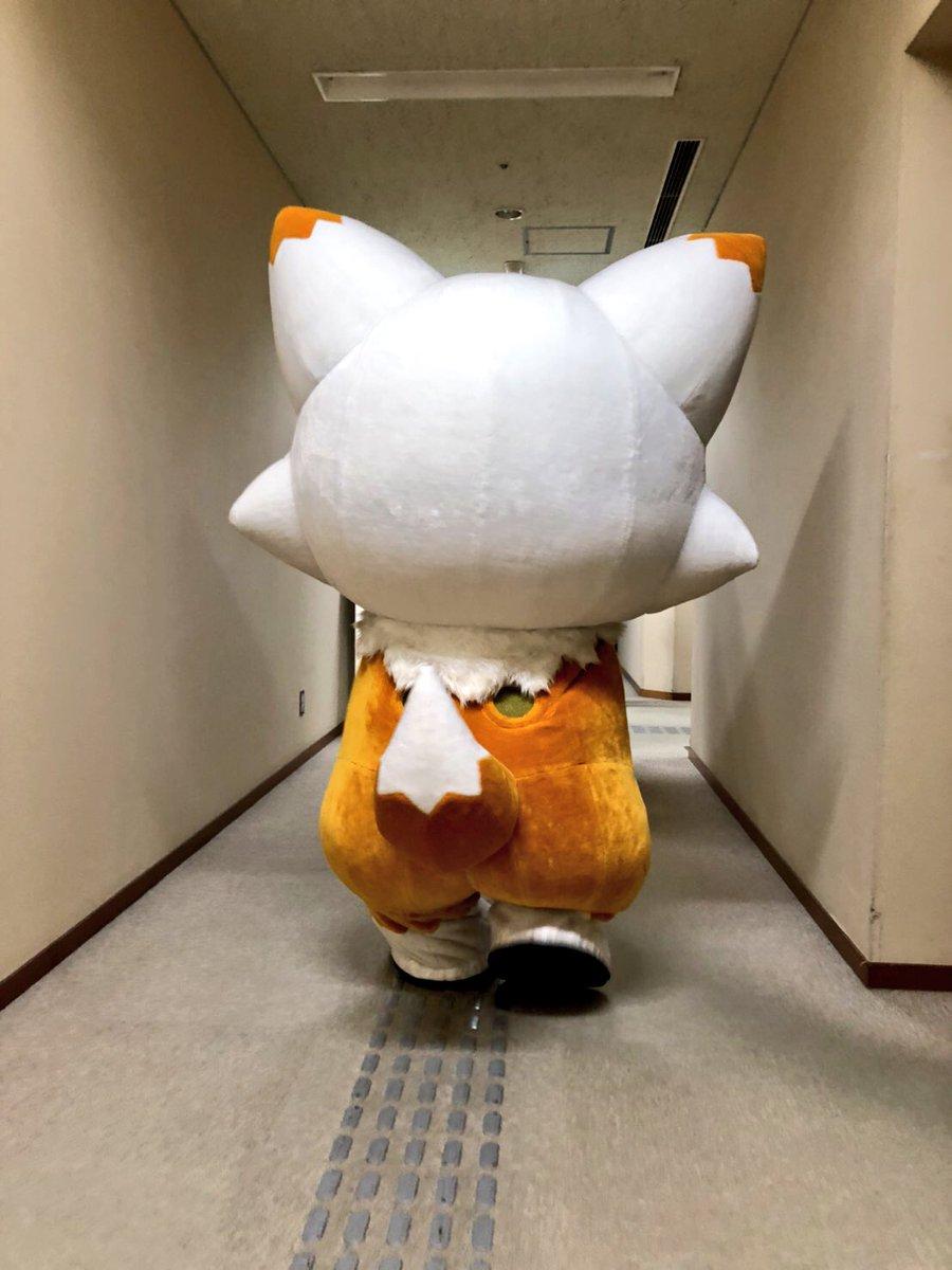 刀剣乱舞-本丸通信-【公式】さんの投稿画像