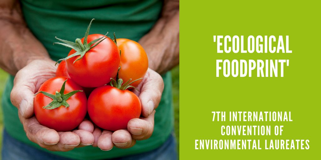 test Twitter Media - #Food will be the overarching theme of ICEL 2018. Be part of discussions on  'farm to fork' and the natural #environment → https://t.co/T8FRHEgU8d #ICELFreiburg @TristramStuart @Global_Nature_F @JeunessePark  @denkmalfilm https://t.co/BTRuCtaUtw