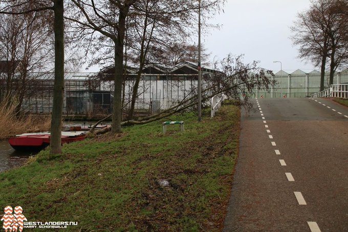 Ruim 100 stormschademeldingen bij gemeente Westland https://t.co/lPoD9PfGjN https://t.co/8dswDe80mp