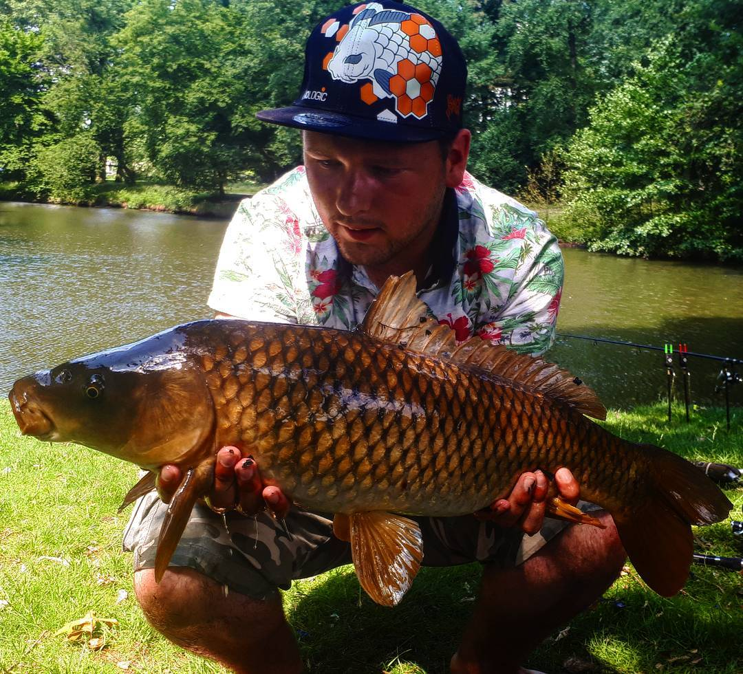A lovely <b>Common Carp</b> here caught back in the summer, amazing colours! #fishing #angling #carp