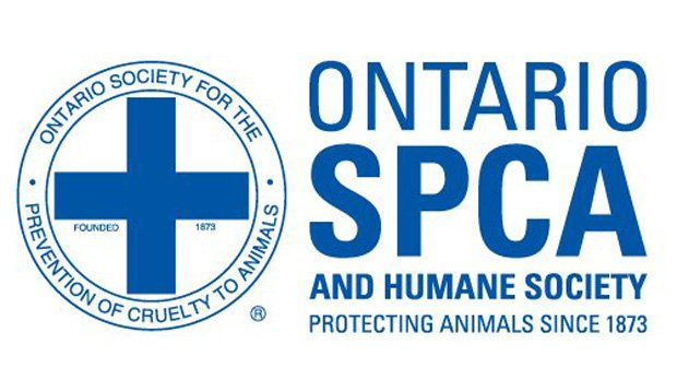 Ontario man pleads guilty to animal cruelty in deaths of 1,500 pigs