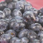 Can Blueberries Help Fight Cervical Cancer?