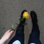 Some rose in your life? #FridayFeeling #Supernatur...