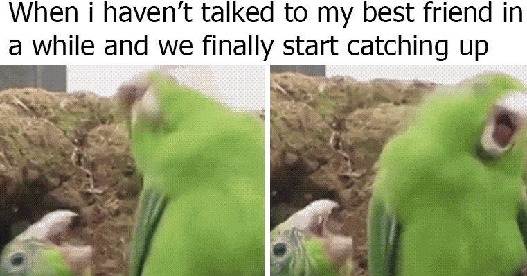 24 memes that are super relatable if you've been best friends for 10 years https://t.co/zR2VmDAxkY https://t.co/Ed99sA3Lo1