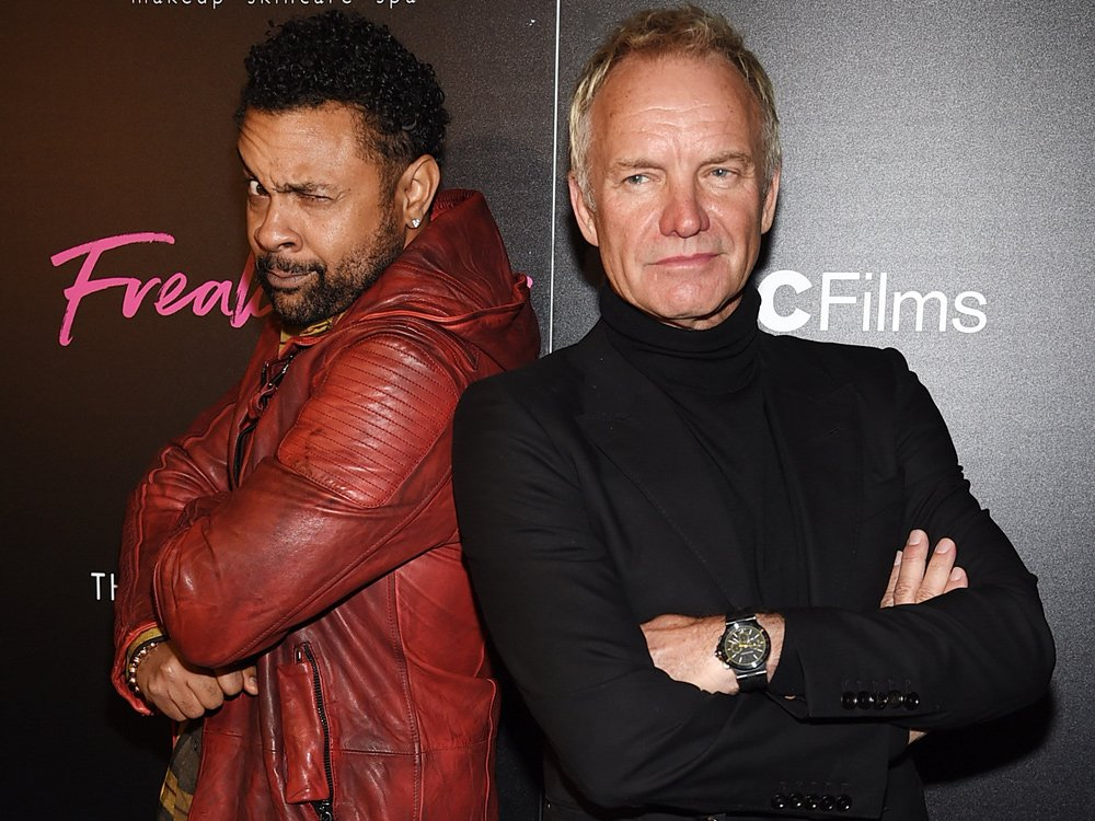 Sting, Shaggy in talks for Super Bowl tailgate show: report