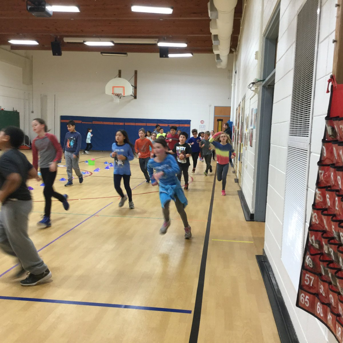 test Twitter Media - Posted by Ellie: 4S and 4MO are doing the monthly jog for 10 minutes! #d30learns https://t.co/RkOgw80bCj